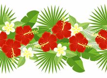 Seamless strip of tropical flowers and leaves. decorative strip of flowers of hibiscus and plumeria, palm leaf, monstera. Royalty Free Stock Photography