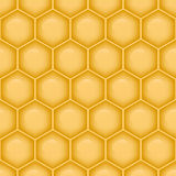 Seamless structure of honeycomb. Stock Photography