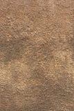 seamless stucco texture Royalty Free Stock Image