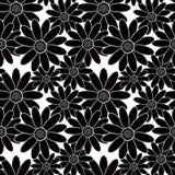 Seamless stylish pattern with black flowers  on white background Stock Photo