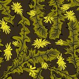 Seamless stylish pattern with dandelions. Decorative floral background stock illustration
