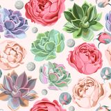 Seamless succulent and peony roses. Colorful succulent and peony roses vector seamless background Royalty Free Stock Photos