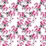 Seamless sumi-e sakura pattern. Stock Images