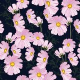 Seamless summer autumn pattern with pink flowers. Pattern for fashion, fabric and all prints on black background royalty free illustration