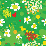 Seamless summer background with  flowers and dots Stock Images