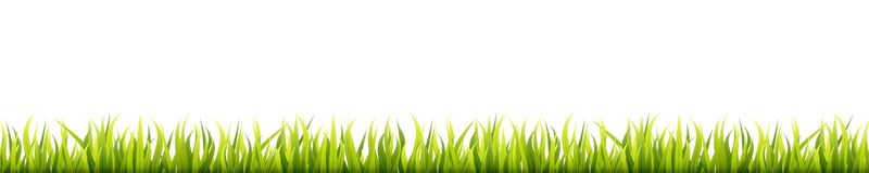 Seamless summer grass panorama. Green springtime herbal lawn. Field or meadow horizontal decoration lines.  royalty free illustration