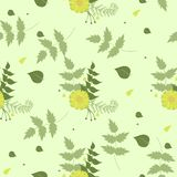 Seamless summer pattern green with yellow flowers. Vector illustration. Seamless summer pattern green with yellow flowers. Vector image royalty free illustration