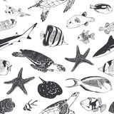 Seamless summer pattern. Sea and ocean inhabitants. Fish, turtle Royalty Free Stock Photography
