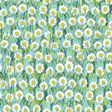 Seamless summer pattern of white chamomiles on the grass. Colorful background in the form of a flower glade. Hand drawn watercolor illustration. Can be used vector illustration