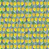Seamless summer pattern of yellow tulips on the grass. Colorful background in the form of a flower glade. Hand drawn watercolor illustration. Can be used for stock photos