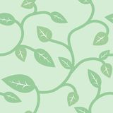 Seamless Summer and Spring Pattern with Leaves Stock Image