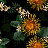 Seamless sun flower with green leaves on black background Stock Photos