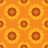 Seamless sun flower pattern orange background vect Royalty Free Stock Photo