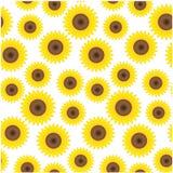 Seamless sunflower background Stock Image