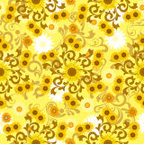 Seamless sunflower pattern Royalty Free Stock Photo