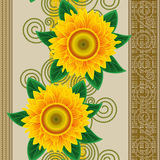 Seamless from sunflowers. Stock Image
