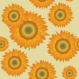 Seamless  with sunflowers Stock Photography