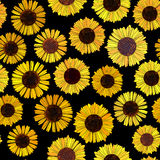 Seamless sunflowers vector background. Seamless vector background of abstract sunflowers on black Stock Images