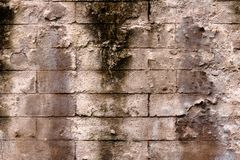 Seamless surface of brick wall Royalty Free Stock Image