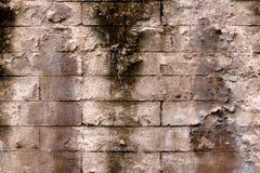 Seamless surface of brick wall Royalty Free Stock Image