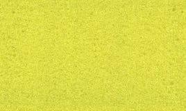seamless svamptextur Arkivfoto
