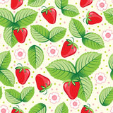Seamless sweet strawberry background. Stock Photos