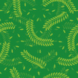 Seamless Tamarind Leaves Pattern Royalty Free Stock Photo