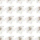 seamless tappning för blom- modell Härliga liljablommaknoppar på en vit Utdragen vektorbakgrund för abstrakt hand vektor illustrationer