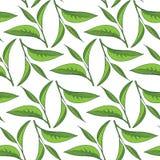 Seamless tea pattern vector illustration