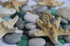 seamless tema för blått marin- hav Arkivbilder