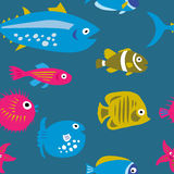 Seamless template with decorative beautiful fish Stock Images