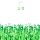 A seamless template of a postcard with the watercolor green grass on a white background. A seamless template of a postcard with the green grass, painted hand Stock Photos
