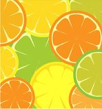 Seamless template of sliced lemon and orange Stock Photography