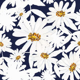seamless textur Royaltyfria Bilder