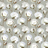 Seamless textur med bomullsblommaleaves Royaltyfri Fotografi