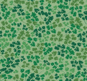 Seamless textur med parsleyleaves stock illustrationer