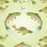 Seamless texture  American trout and ephemera vector. Seamless  texture  American trout and ephemera carnivore jumps vector illustration Royalty Free Stock Image