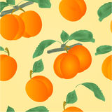 Seamless texture apricots with leaves vector Stock Photo