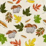 Seamless texture with autumn nature Royalty Free Stock Photography