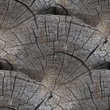 Seamless texture background old wood cracks Stock Images