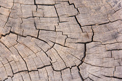 Seamless texture background old wood cracks Stock Photos