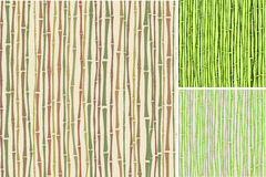Seamless texture with bamboo stalks. Three colored seamless texture with bamboo stalks, green and brown colors,  illustration Stock Photos