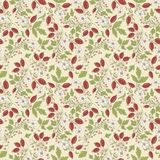 Seamless texture barberry on a beige background Royalty Free Stock Photography