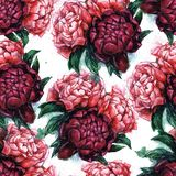 Seamless texture with beautiful peonies. Watercolor illustration with flowers. Gentle style. Repeating background. Tile pattern Stock Photography