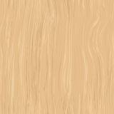 Seamless texture of beech Stock Images