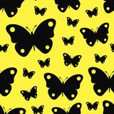 Seamless texture black butterflies. Seamless texture with silhouettes of vector butterflies Royalty Free Stock Image