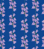 Seamless texture with blue meadow flower Royalty Free Stock Image