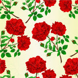 Seamless texture bouquet of red  roses and rosebuds festive background vintage vector botanical illustration. Hand draw Stock Photos