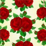 Seamless texture bouquet of red  roses and rosebuds festive botanical background. Vintage vector botanical illustration hand draw Stock Photo