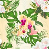 Seamless texture bouquet with tropical flowers  floral arrangement, with beautiful white and yellow  orchids, palm,philodendron an Royalty Free Stock Photos